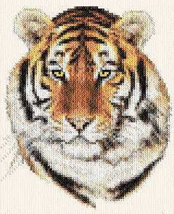 схема морды тигра для вязания